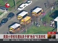 """美国小学校车遭玩具子弹""""枪击""""引发担忧"""