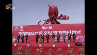 第24届菏泽国际牡丹文化旅游节开幕