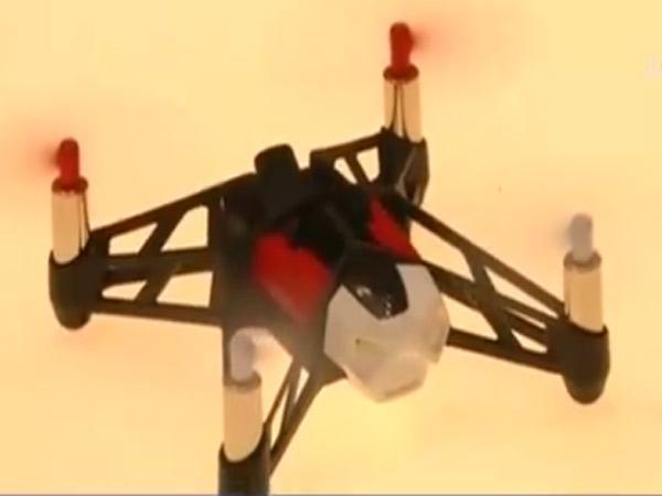 实拍:法国军方训练老鹰抓捕无人机
