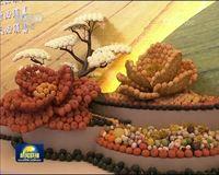 伟大的变革——农村改革成就辉煌 菜篮子日益丰富