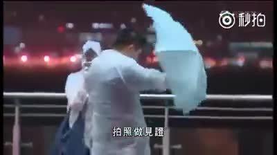 香港的台风报道,让我们感受下这风......
